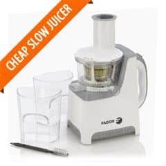 Best Inexpensive Slow Juicer : Best Cheap Juicer Budget Juice Extractors