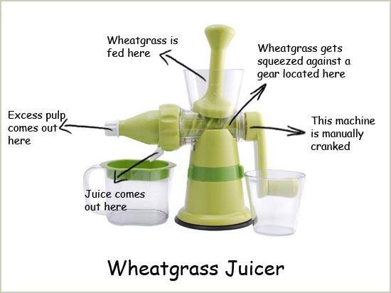 Manual Wheatgrass Extractor